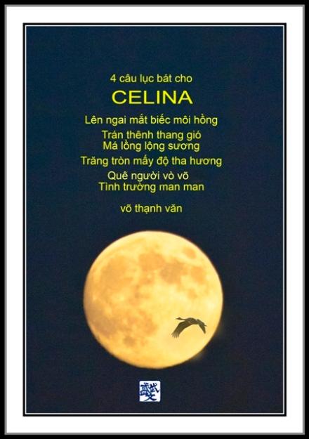 Celina(f) (1) d